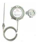 Датчики температуры Hy-Lok ETS3000X фото