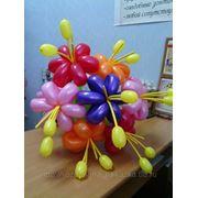 Букеты, цветы из шаров