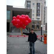 Доставка воздушных шаров в Екатеринбурге фото