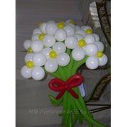 Цветы из шаров в калининграде фото