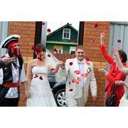 Проведение свадьбы в пиратском стиле, ведущий Дмитрий