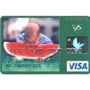 Услуги по обслуживанию платежных карт Visa фото