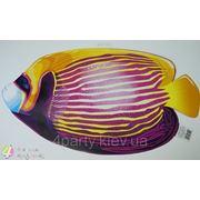 Банер-декор Рыба-Ангел фото