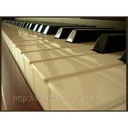 Консультация при выборе фортепиано фото