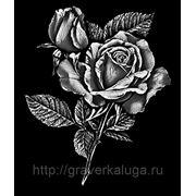 Роза и букет