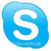 Skype-консультация по организации грибного производства фото