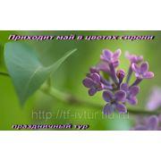 """Экскурсионный тур """"Приходит май в цветах сирени"""" 3-4 мая 2013 г. фото"""