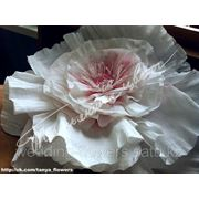 Цветы для свадьбы (из бумаги) в Алматы фото