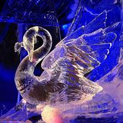 Ледовые скульптуры и фигуры в Запорожье фото
