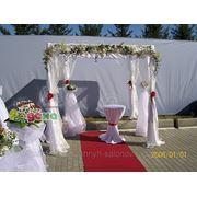 фото предложения ID 7584518