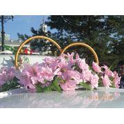 фото предложения ID 7584564