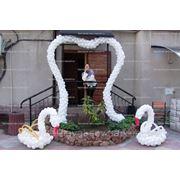 Оформление свадеб — лебеди фото