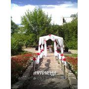 Выездные церемонии бракосочетания