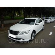 Такси Новосибирск Рубцовск фото