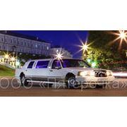 Свадебный кортеж, лимузины фото