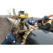 Строительство газопровода-отвода фото