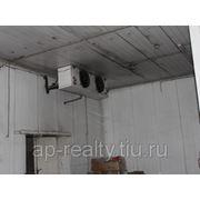 Аренда складских помещений и морозильных камер фото