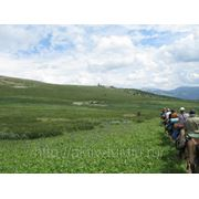 Тур «Пять дней в седле» 5 дней конного похода (7дн/6н) по Алтаю фото