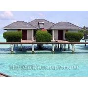 Отдых в Sun Island Resort & Spa 5* фото