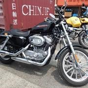 Мотоцикл чоппер No. B5052 Harley Davidson XL883 фото