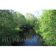 фото предложения ID 7592462
