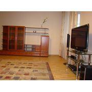 Сдается в аренду двухкомнатная квартира в центре Н. Новгорода_VIP фото