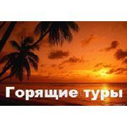 фото предложения ID 7593149