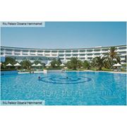 """Отдых в Тунисе.Отель """"Riu Palace Oceana"""" 5* фото"""