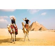 Египет из Кемерово фото