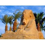 Встречаем новый год в Египте! фото