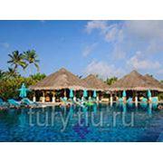 """Отдых на Мальдивах. Отель """"Anantara Veli Maldives Resort SPA"""" 5* Luxe фото"""