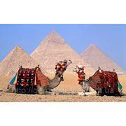 Египет туры фото