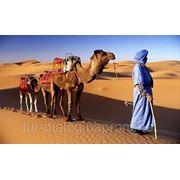Отдых в Марокко. Имперские города и отдых на океане