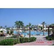 Отдых, туры, путевки в Египет Shores Golden 3* (ex.Golden Sharm) (Шарм-Эль-Шейх)