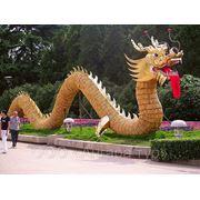Туры в Китай из Иркутска фото