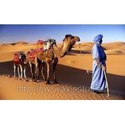 Марокко - Удивительная страна. Все о Марокке