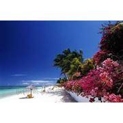 Маврикий-Полный тур.пакет.Авиа в стоимости тура. фото