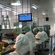 Система оперативного учета выпуска консервной продукции на участке укладки шпрот. фото
