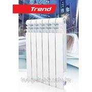 Биметалический Радиатор Royal Thermo Trend 350 фото