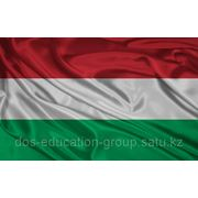 Подготовительная программа для поступления в медицинские университеты Венгрии фото