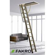 Чердачные лестницы FAKRO фото