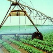 Водоснабжение животноводческих комплексов и ферм фото