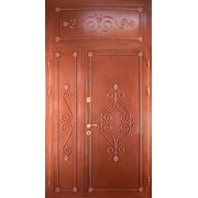 Наружные двери с покраской 18 фото
