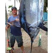 Рыболовный туризм фото