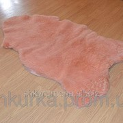 Овечья шкура - овечьи шкуры - шкура овцы (шерсть средней длины) 14 фото