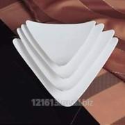 Тарелка треугольная б/борта 22,5 см 6074/9 фото