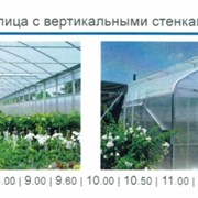 "ТЕПЛИЦA – МОДЕЛЬ ""ATLANTIC"" 10X50 МЕТРОВ фото"
