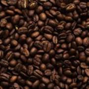 Кофе Кения фото