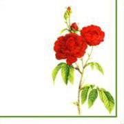 Салфетки цветные Цветы винтаж фото