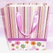 Пакет картонный подарочный фото